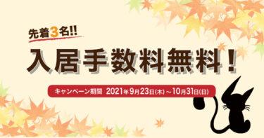 福岡シェアハウスまたたび創業11周年!記念キャンペーン開催!