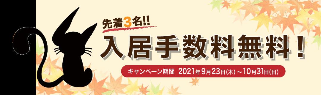 【天晴れ】キャンペーンバナー1